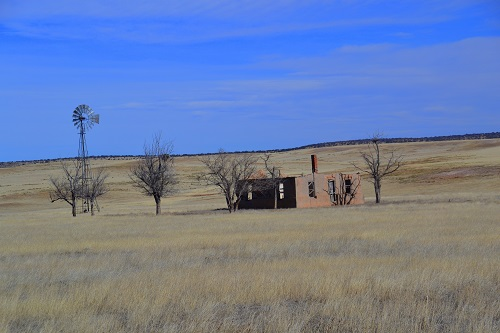 Abandoned homestead near Willard, NM